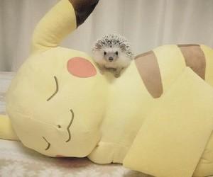 pikachu, animal, and pokemon image