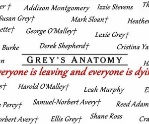 grey's anatomy, grey's quotes, and mcdead image