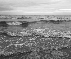 beach, black and white, and ocean image