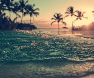 beach, boys, and coconut image
