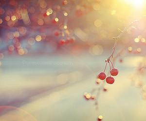 sunshine, cherry, and photography image