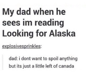 funny, looking for alaska, and books image