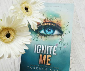 beautiful, books, and shatter me image