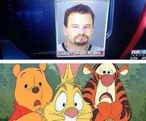 funny, pooh, and lol image