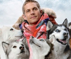 dog, paul walker, and rip image