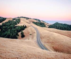 nature, road, and photography image