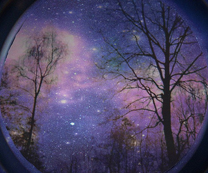 space and trees image