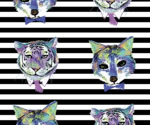 animal, purple, and rayas image