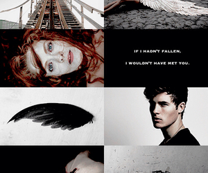 angel and hush hush image