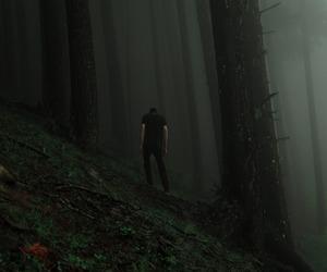 dark and tree image