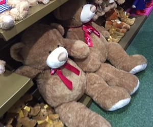 bear, brown, and huge image
