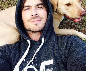 ian somerhalder, dog, and ian image