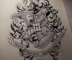 beautiful, harry potter, and world image