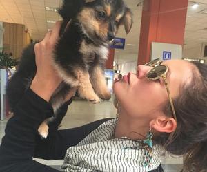 Nina Dobrev, dog, and tvd image