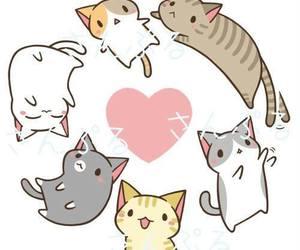 kawaii, cat, and neko image