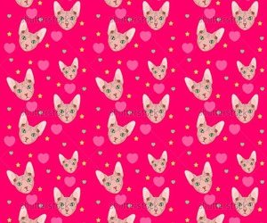 cat, patterns, and prints image