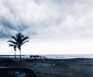 beach, aesthetic, and grunge image