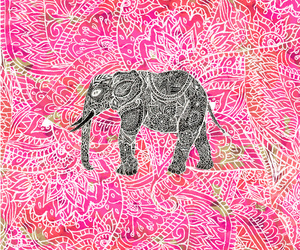 elephant, pink, and tribal image