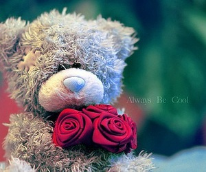 love, bear, and rose image