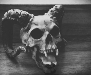 skull, black and white, and satan image