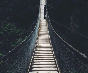 bridge, nature, and hipster image