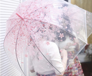 pink, umbrella, and flowers image