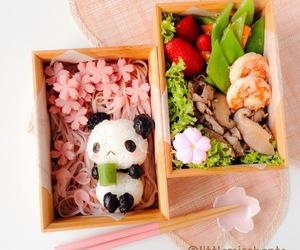 bento and panda image