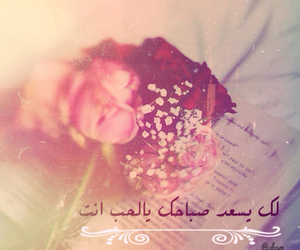 flowers, rose, and صباحك image