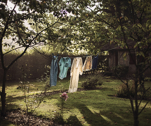 cabin, clothesline, and woods image
