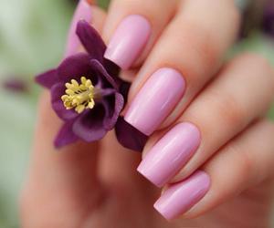 nails, flower, and nail polish image