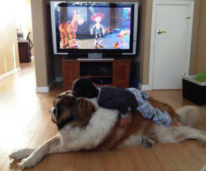 dog, kids, and toy story image