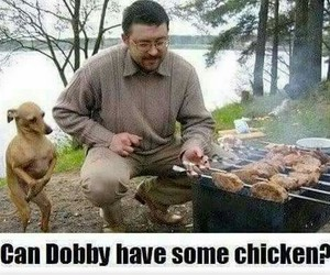 dobby, funny, and harry potter image