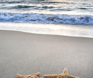 beautiful, sea, and starfish image