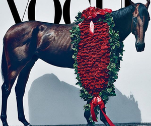 cover and vogue magazine image