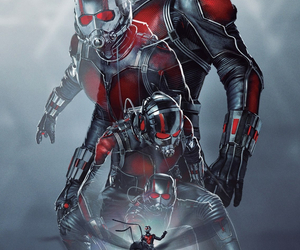 Marvel, ant-man, and ant man image