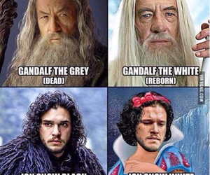 game of thrones, funny, and gandalf image