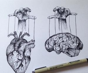 heart, art, and brain image