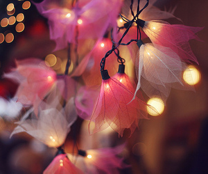 light, pink, and flowers image