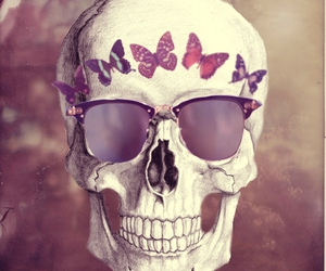 skull and butterfly image