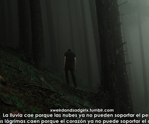 tumblr, quotes in spanish, and texto en español image