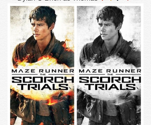 the maze runner, dylan o'brien, and the scorch trials image