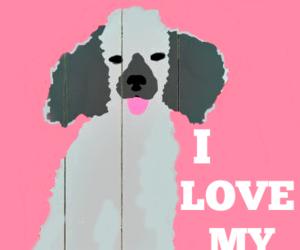 art, dog, and poodle image