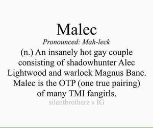 maleç, the mortal instruments, and shadowhunters image
