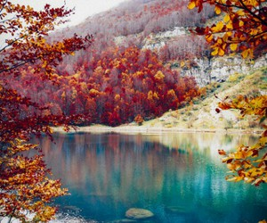 beautiful lake, trees, and autumn colour image