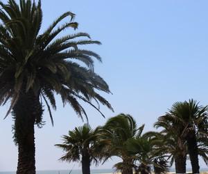 blue sky, holidays, and koizora image