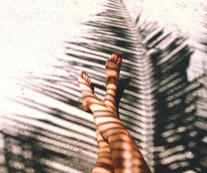 summer, beach, and legs image
