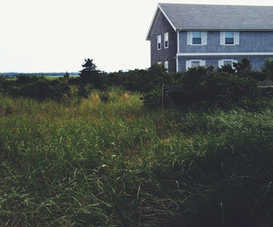 nature, house, and vintage image