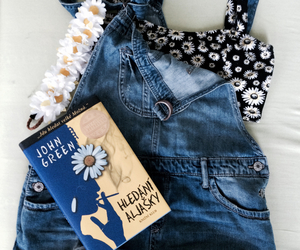 book, books, and daisy image