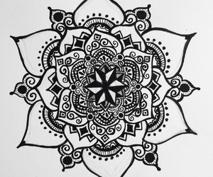 drawing, art, and flower image