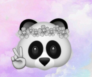 black, panda, and pink image